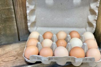 Chicken Eggs - Super Dozen