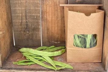 """Green Beans - """"Northeastern"""""""
