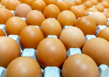 Pastured Brown Eggs/4