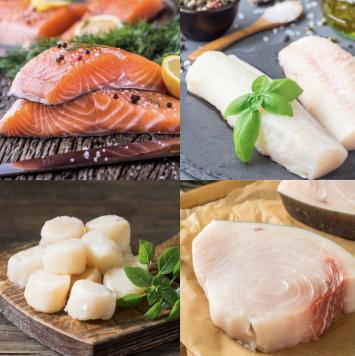 Seafood Bundle