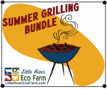 Summer Grilling Bundle
