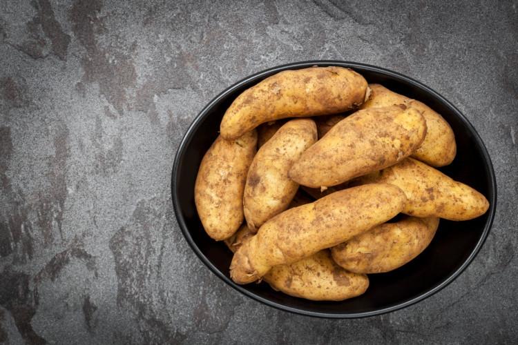 Potatoes, Russian Banana Fingerling
