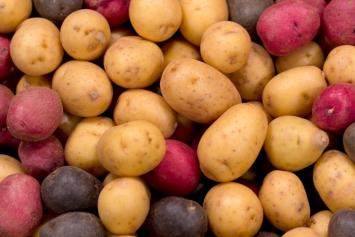 Potatoes, mixed varieties