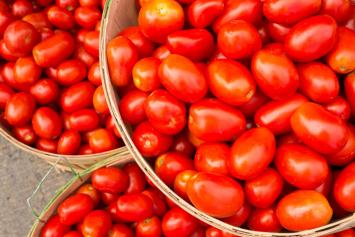 Tomatoes, plum, mixed varieties