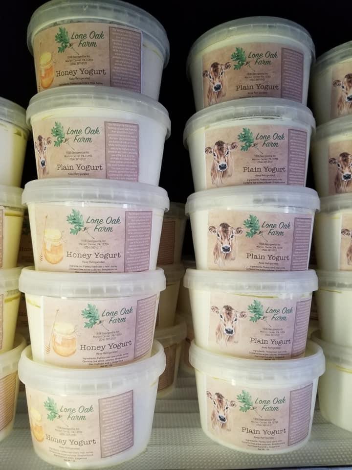 Plain Yogurt Quart