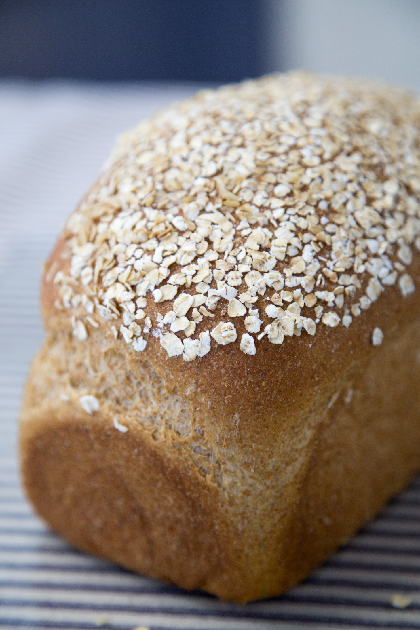 Molasses Wheat Bread Loaf