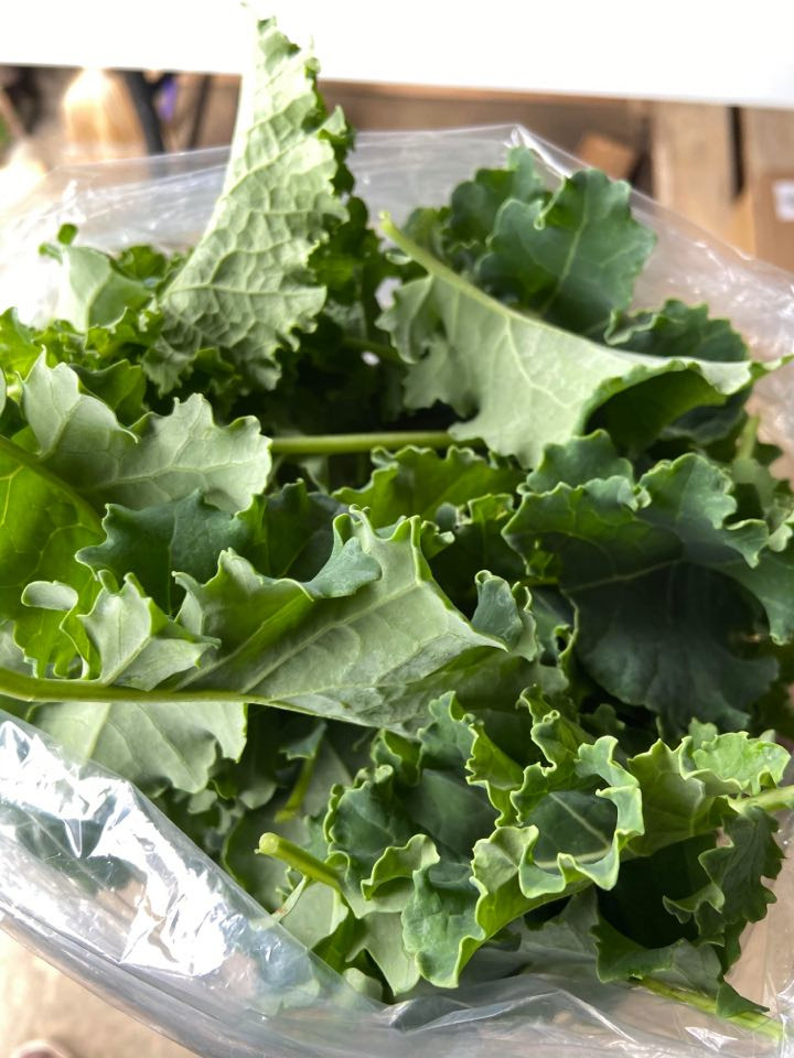 Kale (Large Bag)