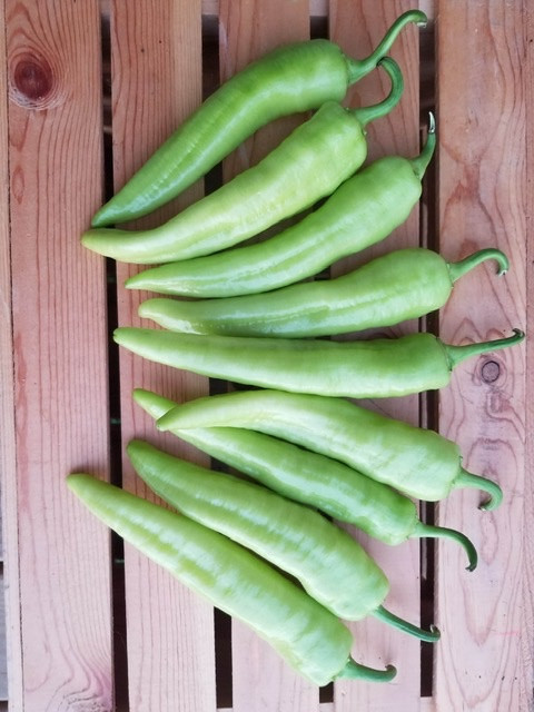Hot Banana Peppers (1 lb)