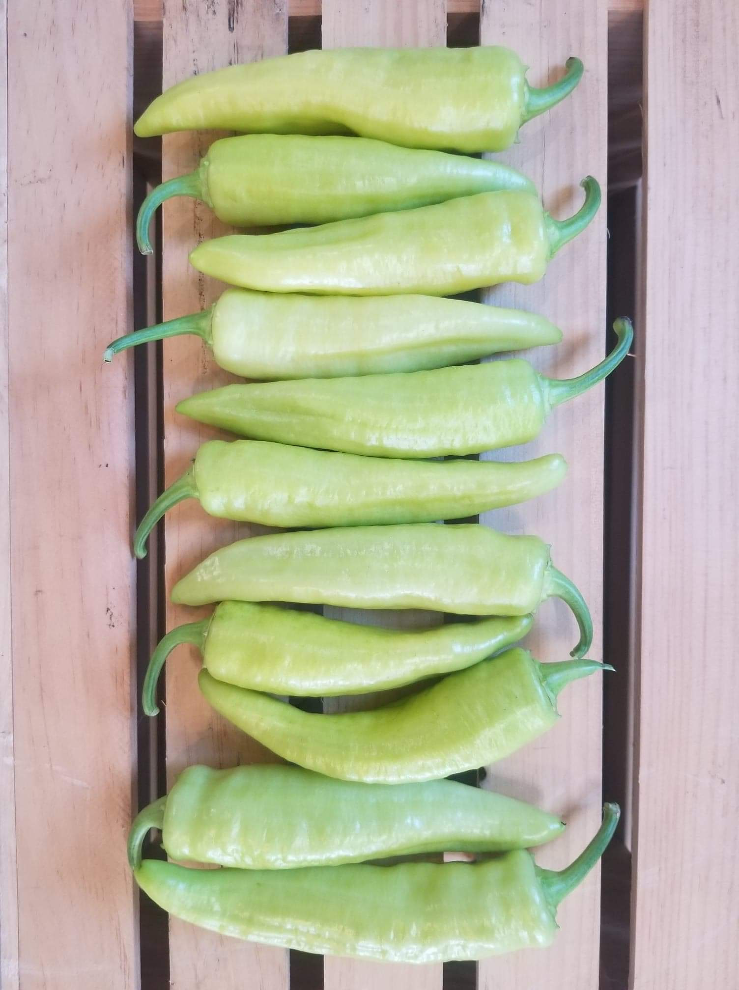 Sweet Banana Peppers (1 lb)
