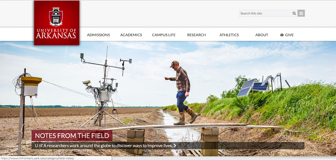 U of A Divisions of Agriculture