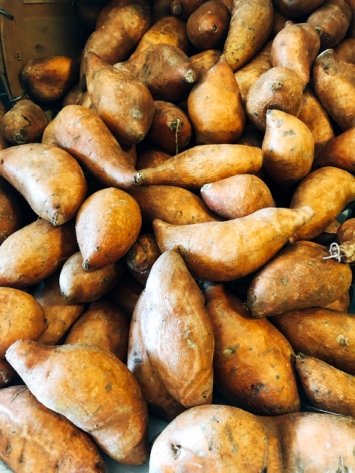 Creole Bell - Sweet Potatoes (Louisiana Grown)