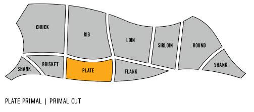 plate-primal-diagram.jpg