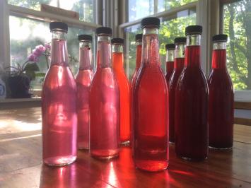 Blueberry Cider Vinegar- Knoll Farm