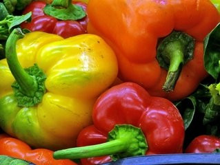 Peppers, Coloured Bell (red, orange, yellow)