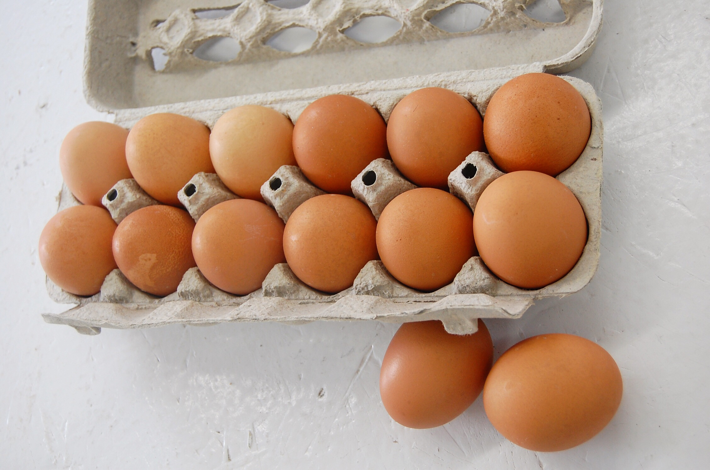 Mobile Pastured Eggs