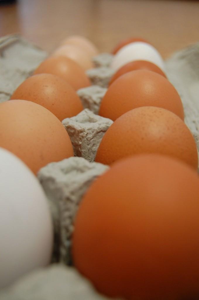 Peaceful Belly CSA Egg share (1 dozen per week)