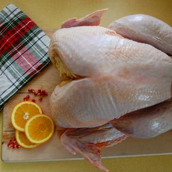 Pastured Turkey (small)