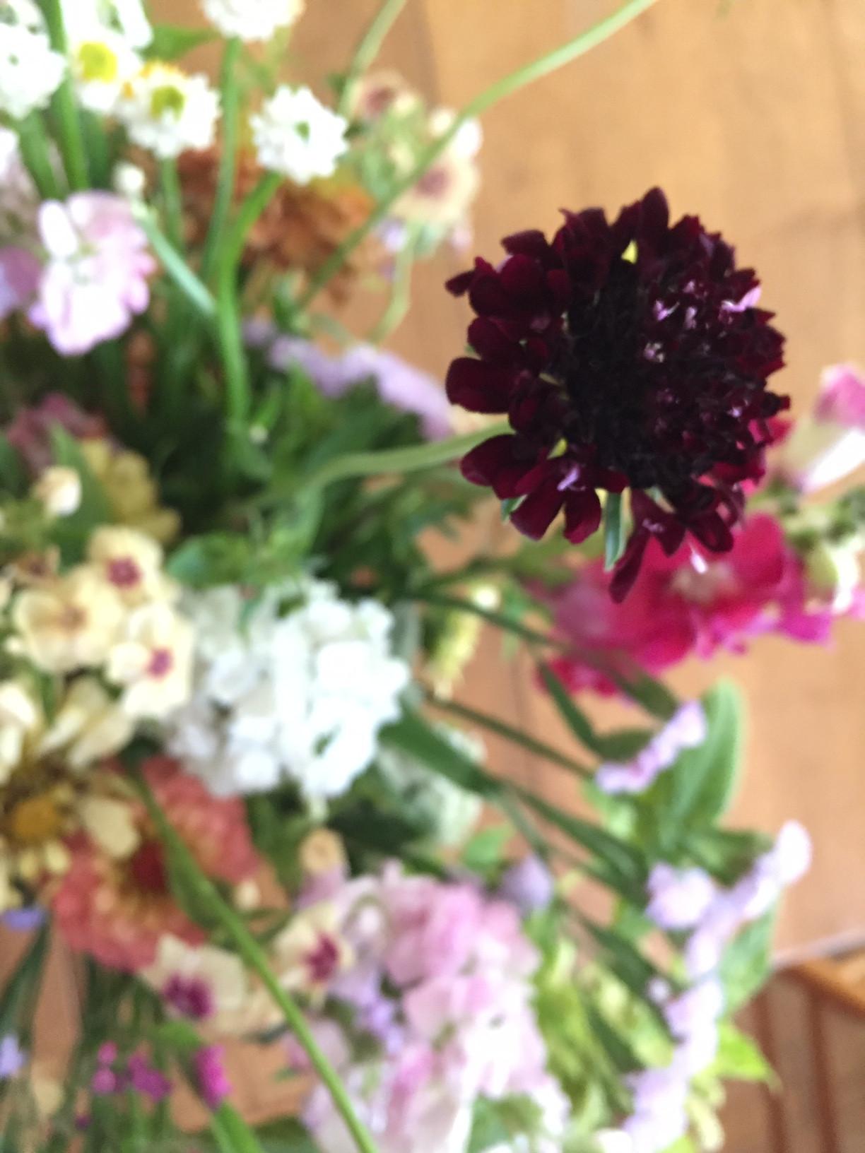 Mixed Garden Flower Bouquet