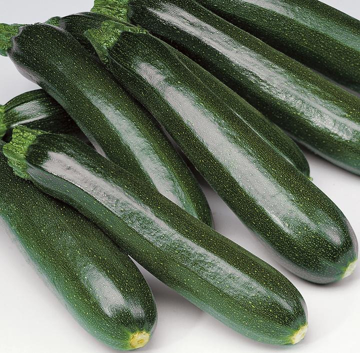 Zucchini - Green