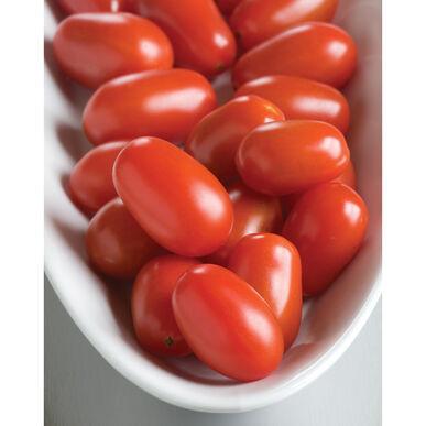 Cherry Tomato - Mexican Red Grape