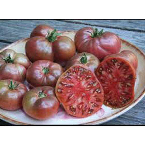 Prudens Purple Heirloom Tomato
