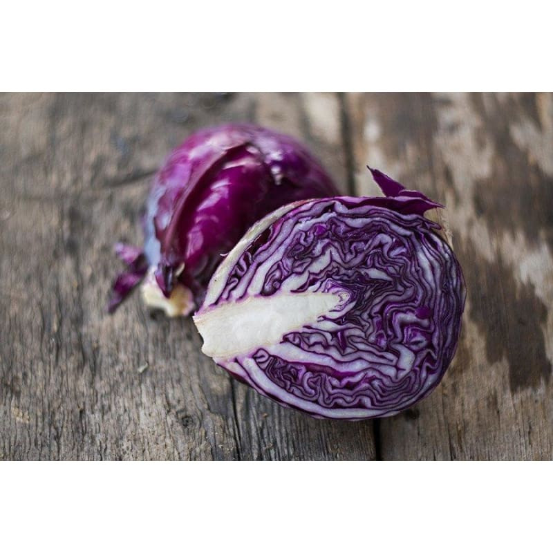 Cabbage - Primero Red