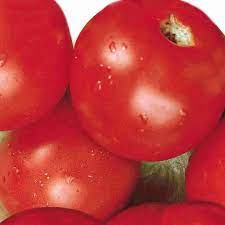 Sub Artic Plenty Tomato