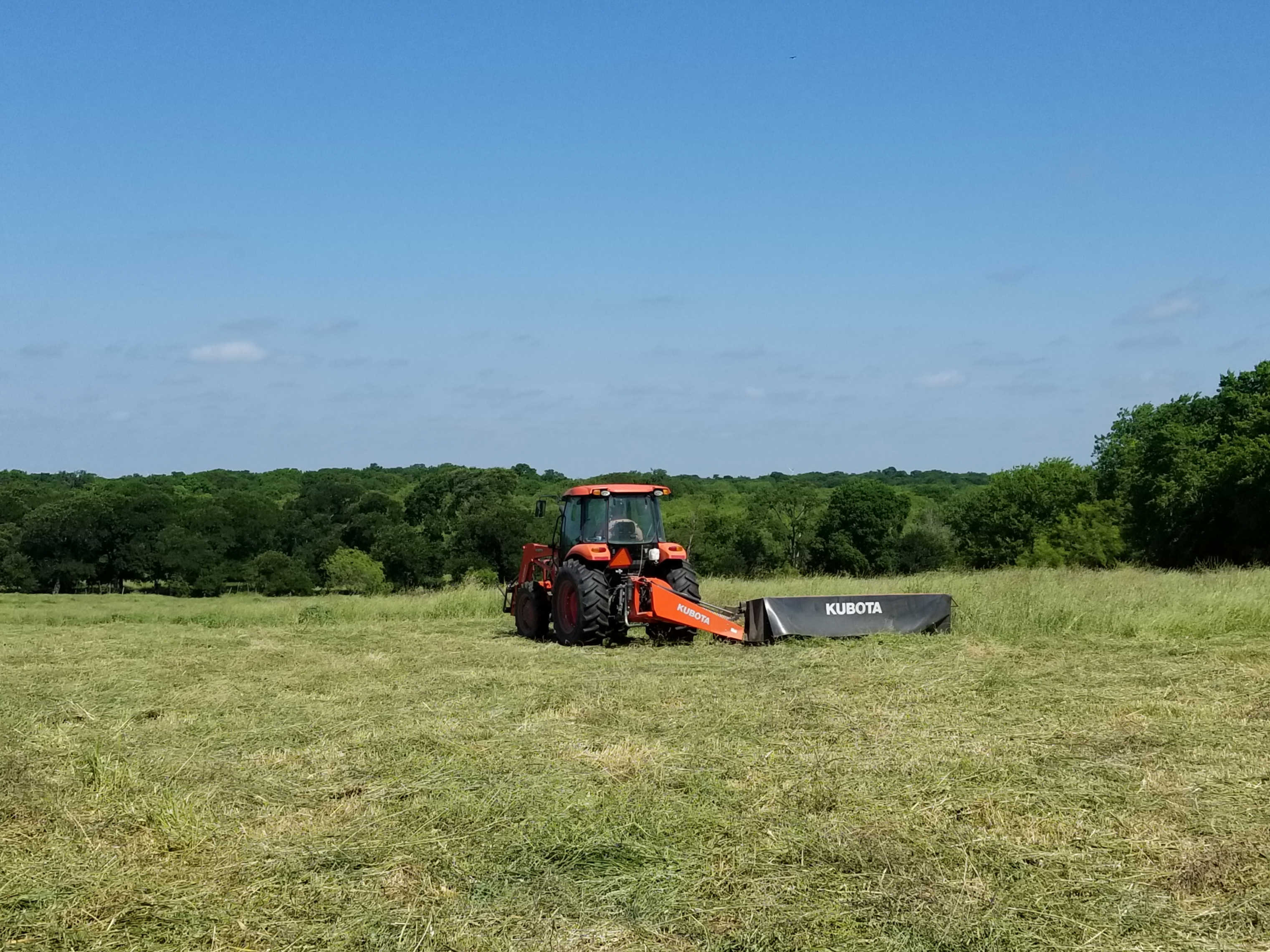 Making hay in the summer!