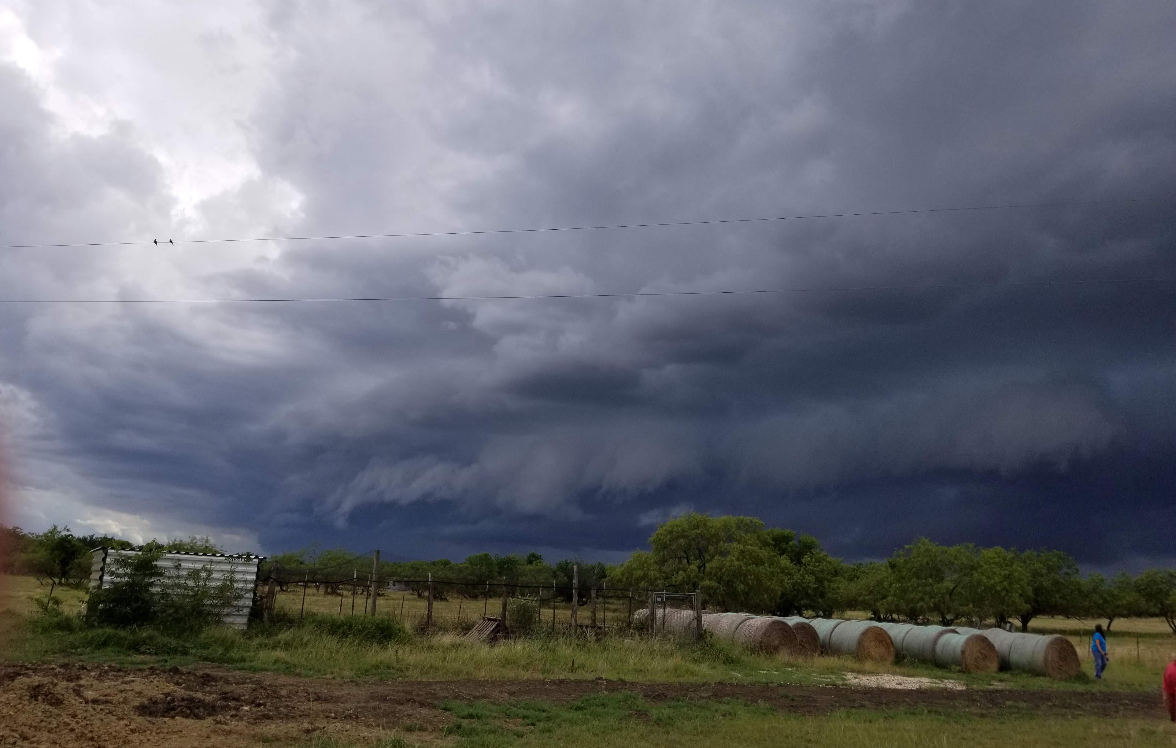 Summer thunderstorm!