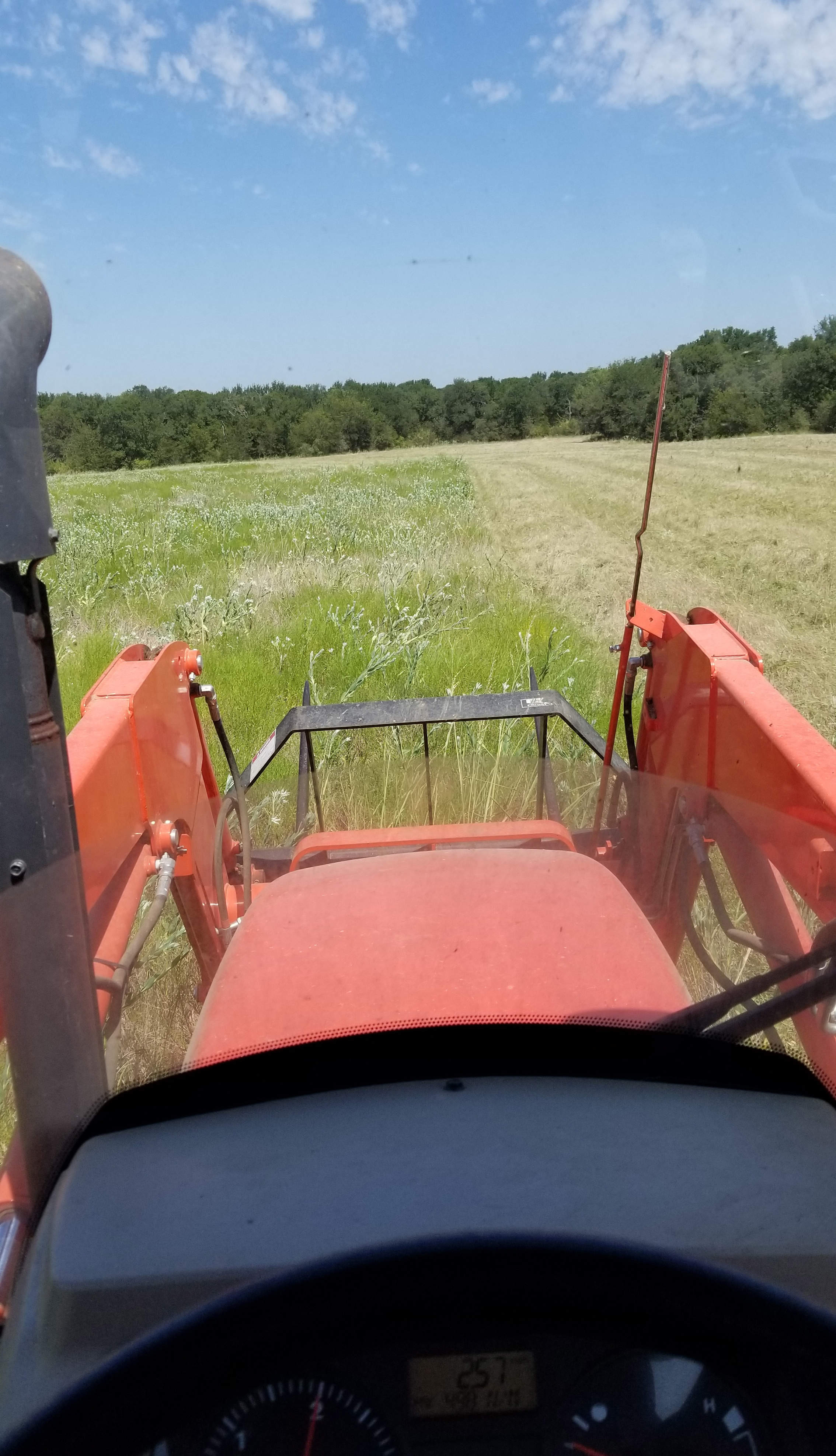 Mowing pastures for weed control!