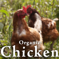 Organic-Chicken.png