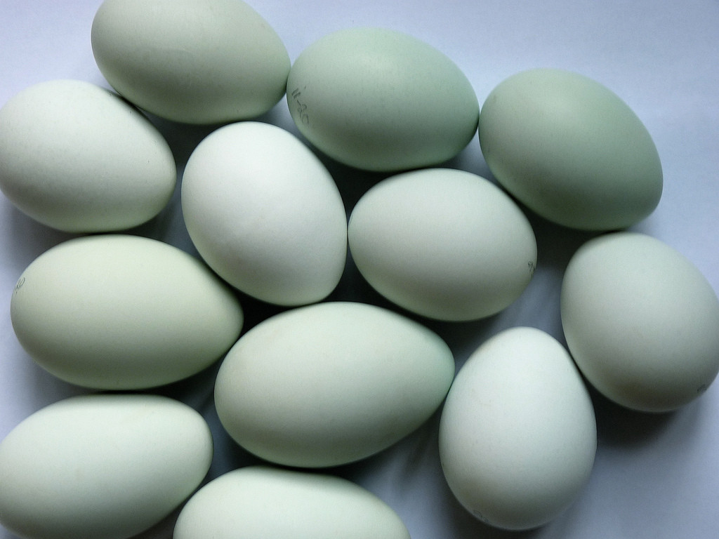 Robinson Farm Duck Eggs