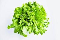 Green-Leaf-Lettuce.jpg