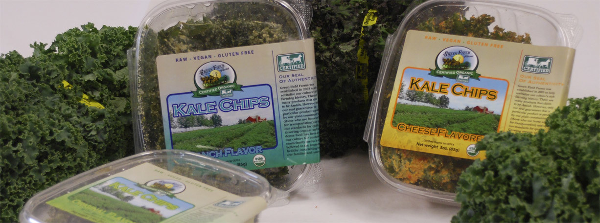 Green Field Farms - Organic  Kale Chips, Original