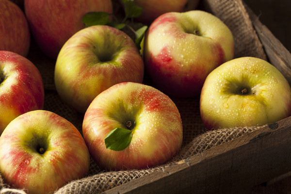 Michigan Honey Crisp Apple