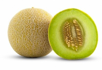 Organic Honeydew Melon