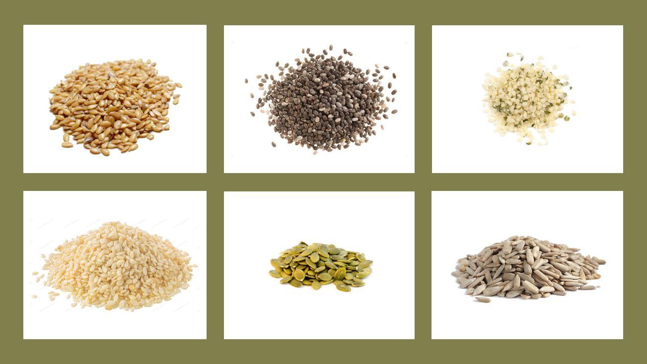 Seed-Gallery-for-Blog.JPG