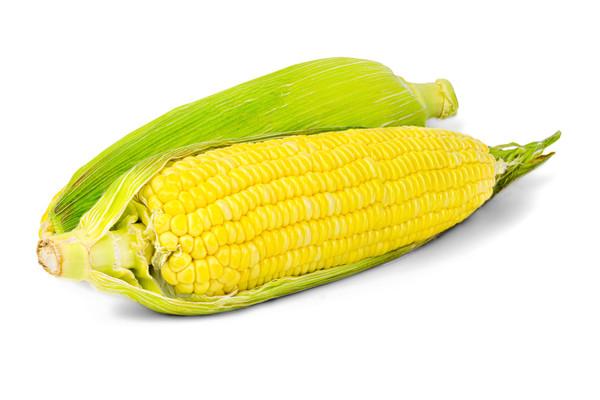GMO-Free Corn on the Cob