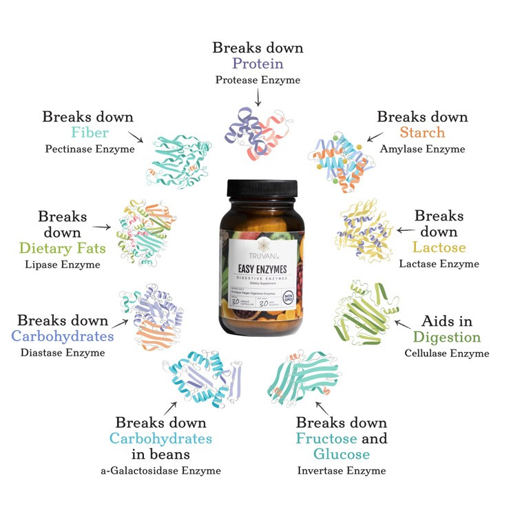 Truvani-Easy-Enzymes-Infographic.png.jpg