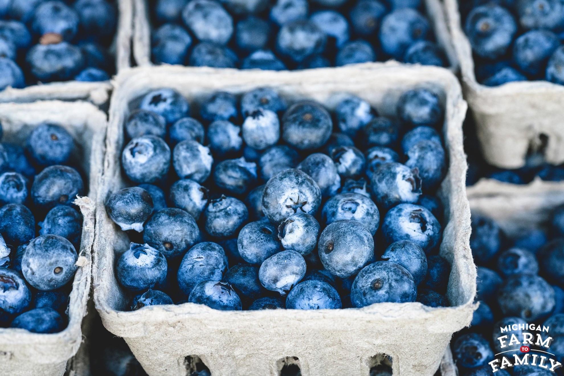Michigan-Grown Organic Blueberries