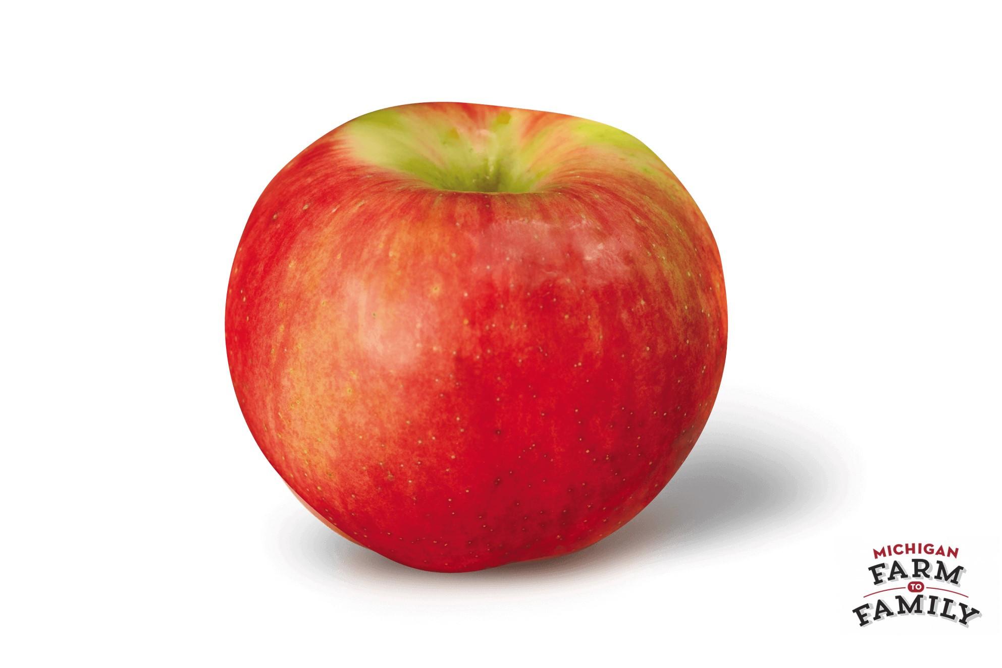 Organic Zestar Apple