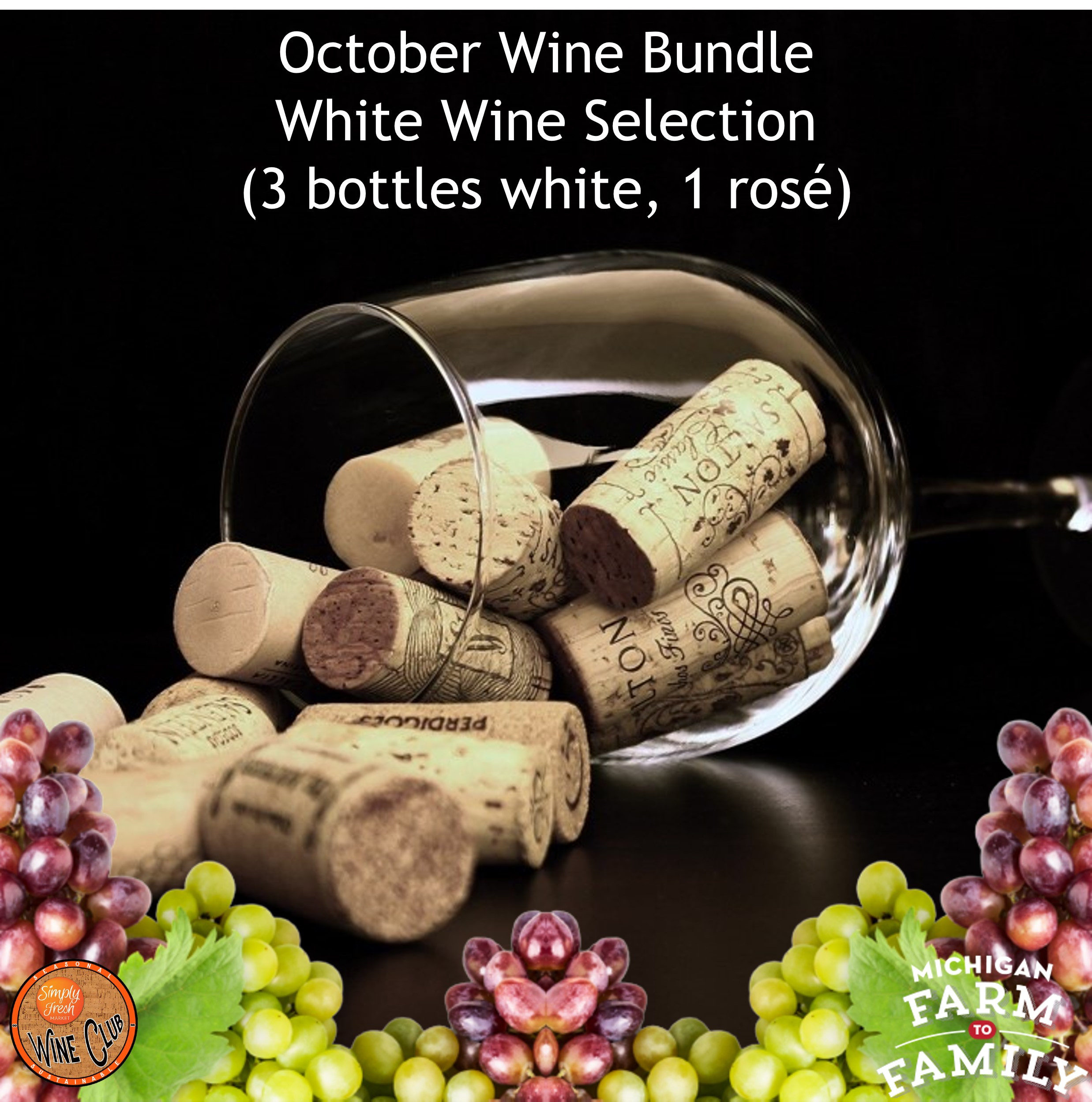 White Wine Bundle - October's Selections
