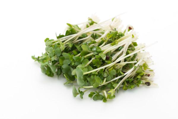 Organic Broccoli Sprouts