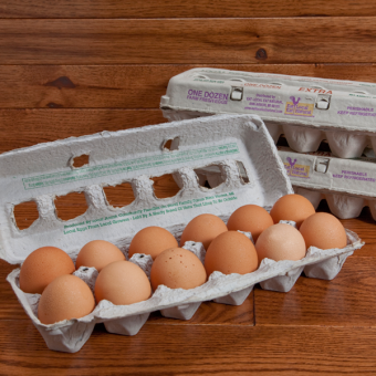 Amish Sunrise  Eggs - Jumbo Chicken Eggs