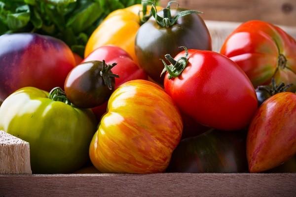 Organic Heirloom Tomatoes, Michigan Grown