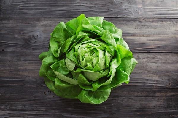 Lettuce Heads - Tantré Farm