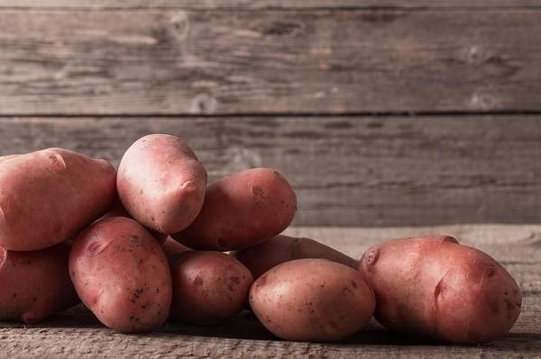 Tantré Farm - Potatoes, Dakota Red