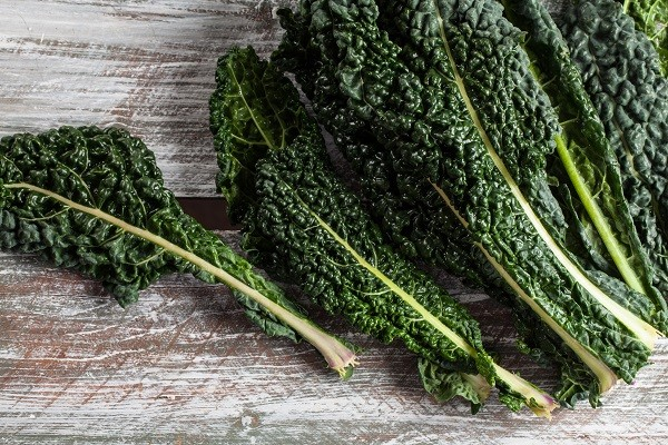Kale - Lacinato - Tantré Farm
