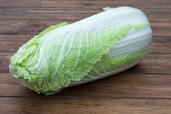 Tantre Farm Cabbage - Napa
