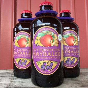 Almar Orchards - Organic Switchel - Saskatoon Berry 4-Pack
